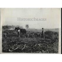 1932 Press Photo Depression Era Farmer Plows Devestated Crop With Team Of Mules