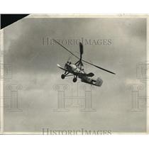 1931 Press Photo Auto