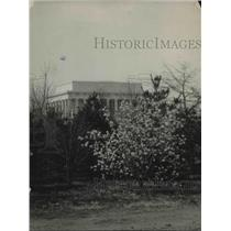 1922 Press Photo Lincoln Memorial National capitol Flowers Blooming