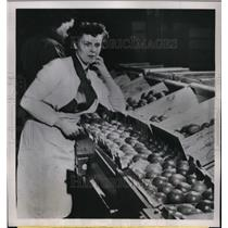 1952 Press Photo Mrs. Ione Counter lost her diamond ring while packing tomatoes