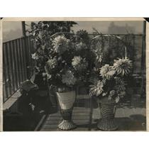 1922 Press Photo two vases of flowers at a flower show - nex11965