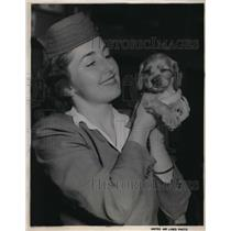 1951 Press Photo United Airlines hostess Jackie Hinds & dog Tippy