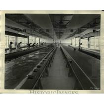 1927 Press Photo laying skins in Goldbeater room, Goodyear Rubber Co