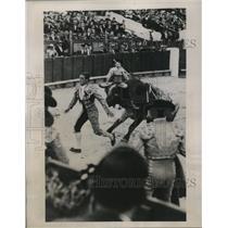 1936 Press Photo Spanish bull fighters in ring in Madrid