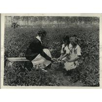 1920 Press Photo Boys & girls in a 4-H garden planting tomatos