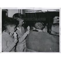 1956 Press Photo Twins Allen and Harry Jones watch glass-coffined Blondini.