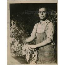 1919 Press Photo Cornelius Weed, son of William M. Weed