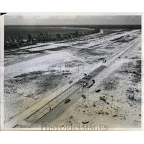 1951 Press Photo aerial view of the palm lined beach section a few miles east of