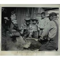 1963 Press Photo Branding operations held at Aubrey Keller Ranch