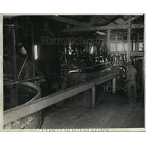 1931 Vintage Press Photo American Rubber Producers Co plant Salinas CA