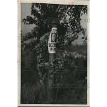 1932 Press Photo A elm tree in Cleveland Ohio with political ads