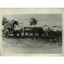 1929 Press Photo US Army engineers & ox carts at San Carlos Nicaragua