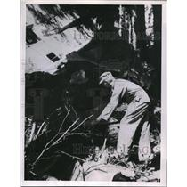 1953 Press Photo Air Force rescue worker searches the wreckage of DC3