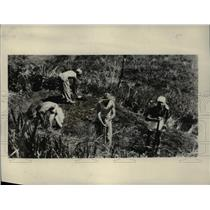 1931 Press Photo Army engineers level drilling area for Nicaragua canal