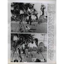 1963 Press Photo Sarasota Fla Great Wallendas tight rope walkers as line snapped