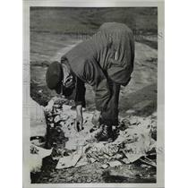 1933 Press Photo of a man digging through the trash to find food.