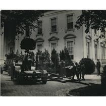 1923 Press Photo Holland bay trees installed at the White House in Wash Dc