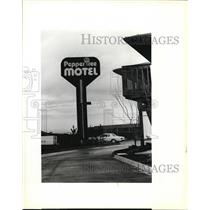 1979 Press Photo Pepper Tree Motel sign, criticized for its lighted pole.