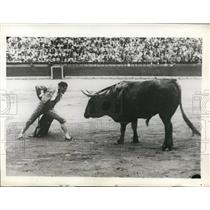 1929 Press Photo Jose Pastor faces off in the bull ring in Valencia Spain