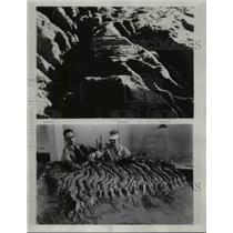 1935 Press Photo of partly finished model of Zion Canyon (top)