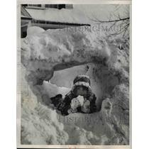 1957 Press Photo Newton Mass Betsy Fishkind playong in new snow