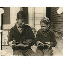 1922 Press Photo 5 turtles, sole survivors of a fire which cost 2500 lives