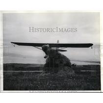 1936 Press Photo Don C Stevens flies plane over a haystack at Venice Calif