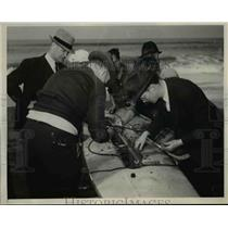 1938 Press Photo Rice Runner Robot for Ocean Testing by US Coast Guard