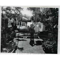 1977 Press Photo Rosa Massi hangs her wash in tiny, narrow yard with flowers