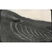 1928 Press Photo Harvest Scene - spa02875