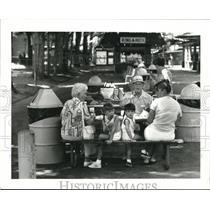 1981 Press Photo Conneaut Lake Park - cva73485