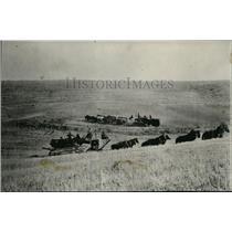 1926 Press Photo Harvest Scene - spa00249