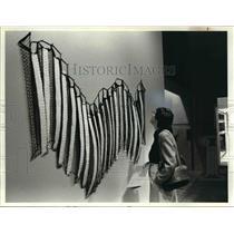 1980 Press Photo Museum of Art May Show 1980 - cva91237