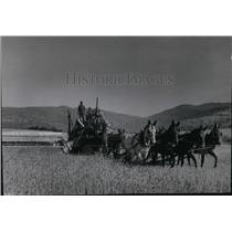 1938 Press Photo Harvest Scene - spa00243