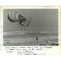 1987 Press Photo Kites, sun worshipers on a clean, sunny day at the beach