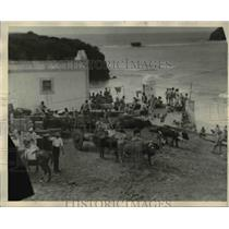 1929 Press Photo Ox Cart in Front of Store House Fernando Noronha Island