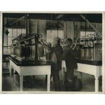 1923 Press Photo View of the Bryans Point Hatchers, Jars contains 100,000 Eggs