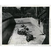 1941 Press Photo Seminole Indians Wrestle Alligators at Musa Isle at Florida
