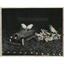 1933 Press Photo Mrs Edna Long Trains Canaries to Ride Mini Car and Motorcycle