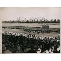 1936 Press Photo Hialeah racetrack Florida Our Admiral, General A, Doris B