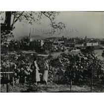 1936 Press Photo Sub Tropical Gardens on the Brisbane River in Australia