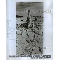 1977 Press Photo Ghost trees of San Miguel Island off California Coast