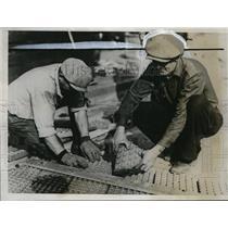 1934 Press Photo Iron paving blocks laid, University of Minnesota in experiment