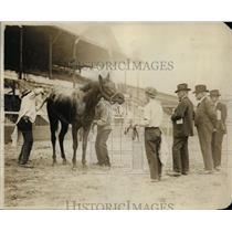 1920 Press Photo Racehorse Pomerpal & jockey at a track - net10195
