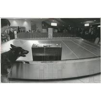 1971 Press Photo Spokane International Airport - spa28221