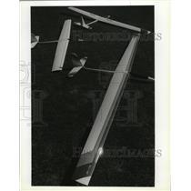1990 Press Photo Airplane Model - spa28819
