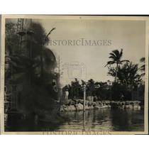 1929 Press Photo Child Swimmer Jackie Ott Diving in Venetian Pool of Fire, Miami