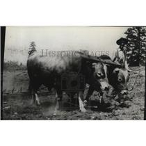 1929 Press Photo A.M. Fuller Rancher in Snohomish County - spa30082