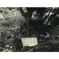 1932 Press Photo Poem on sign in Virginia garden laid out nearly a century ago