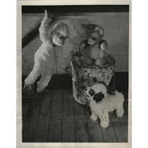 1940 Press Photo Stuffed Animals - ney16254